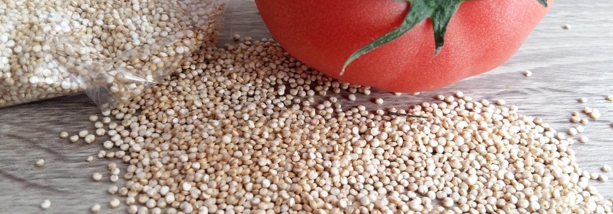 Quinoa. Real Food. Samsara healthy.