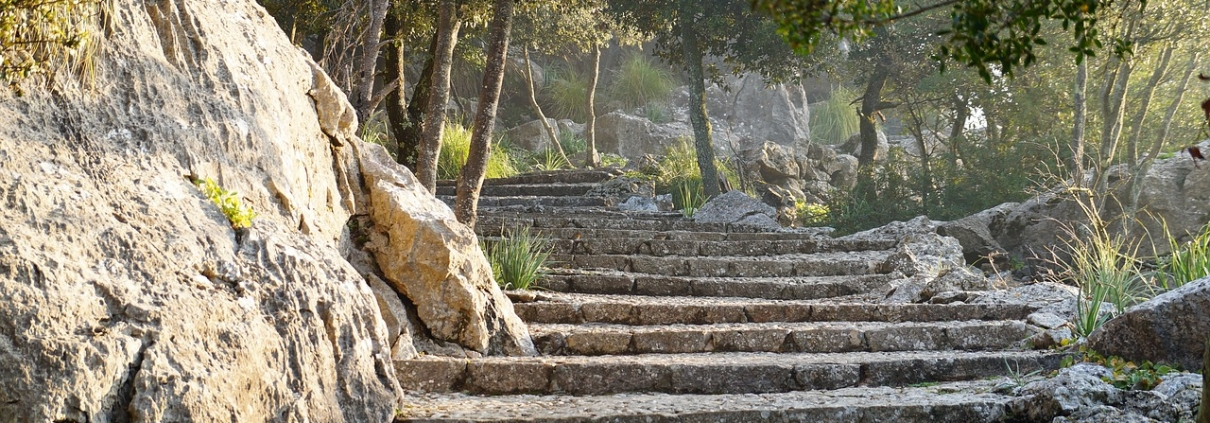 Trails. Mallorca. Healthy holidays. Mallorca.