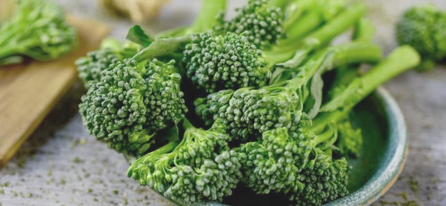 Food. Health. Green.