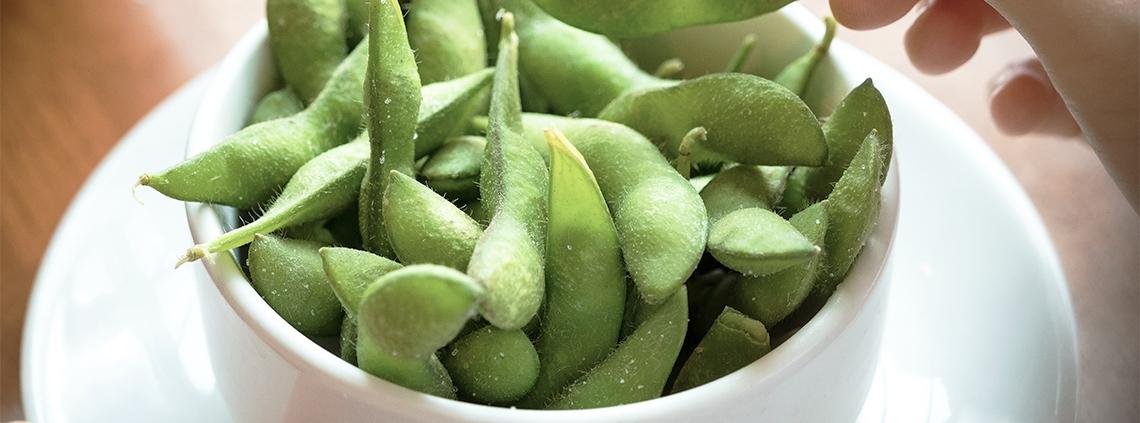 soy beans healthy food - samsara healthy holidays